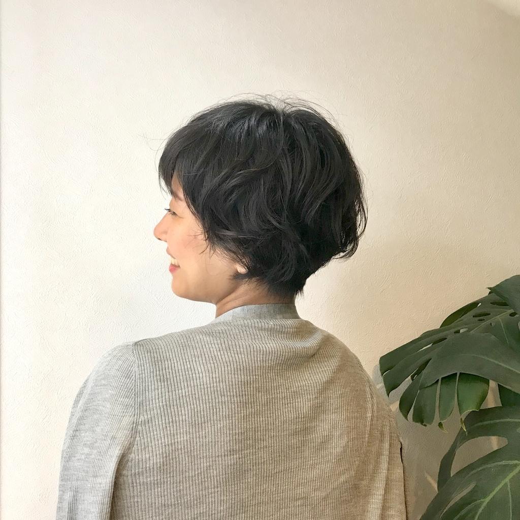 f:id:miwakos:20181211212201j:plain