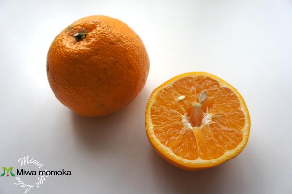 f:id:miwamomoka:20170313114303j:plain