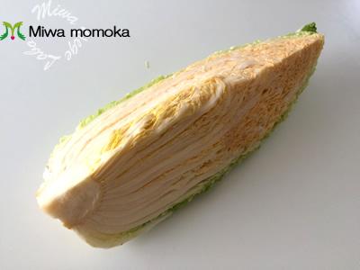 f:id:miwamomoka:20190121095517j:plain