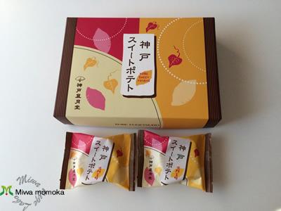 f:id:miwamomoka:20190315131354j:plain