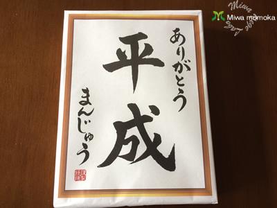 f:id:miwamomoka:20190329110628j:plain