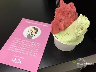 f:id:miwamomoka:20190723110155j:plain