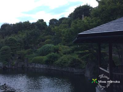 f:id:miwamomoka:20190731145957j:plain
