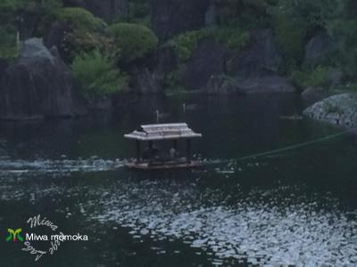 f:id:miwamomoka:20190731150126j:plain