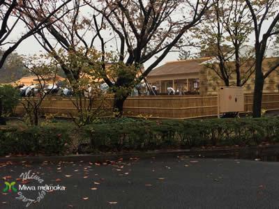 f:id:miwamomoka:20191124112644j:plain