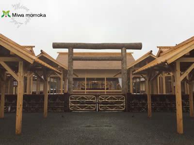 f:id:miwamomoka:20191124113139j:plain