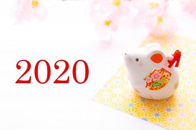 f:id:miwamomoka:20191231153455j:plain