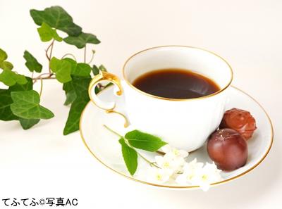 f:id:miwamomoka:20210212113846j:plain