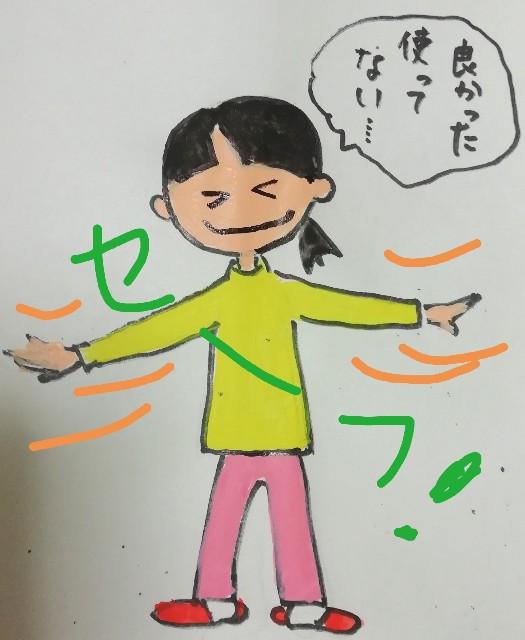 f:id:miwanotabi:20190309124810j:plain