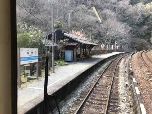 f:id:miwanotabi:20190321185835j:plain