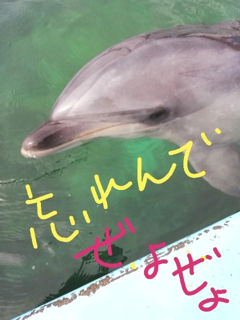f:id:miwanotabi:20190329142030j:plain