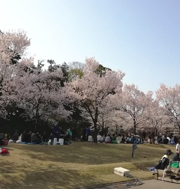 f:id:miwanotabi:20190407103340j:plain