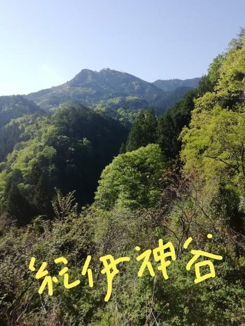 f:id:miwanotabi:20190504081649j:plain