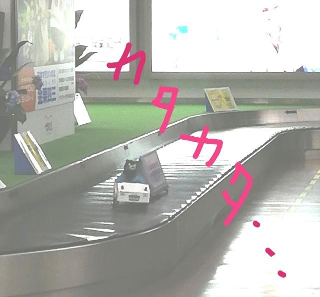 f:id:miwanotabi:20190620195556j:plain