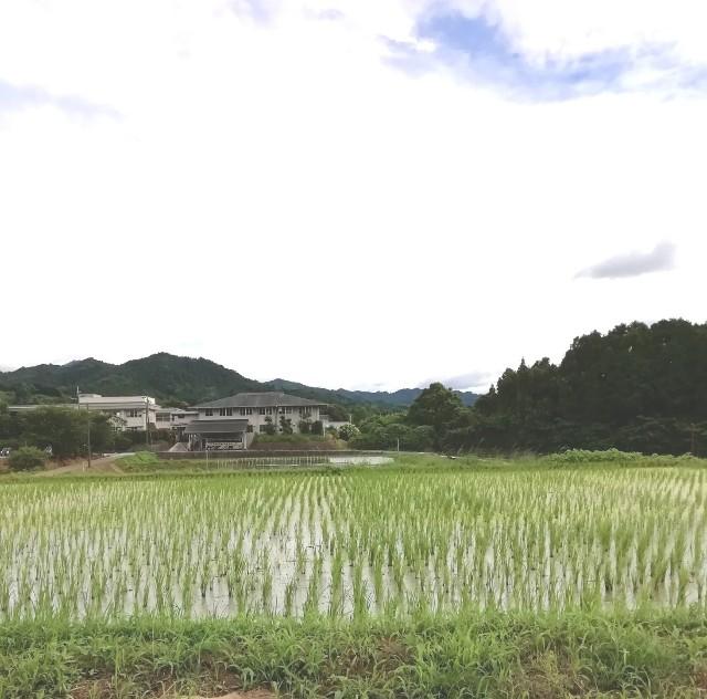 f:id:miwanotabi:20190713134531j:plain