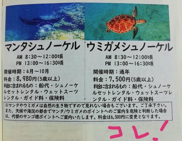 f:id:miwanotabi:20190910225151j:plain