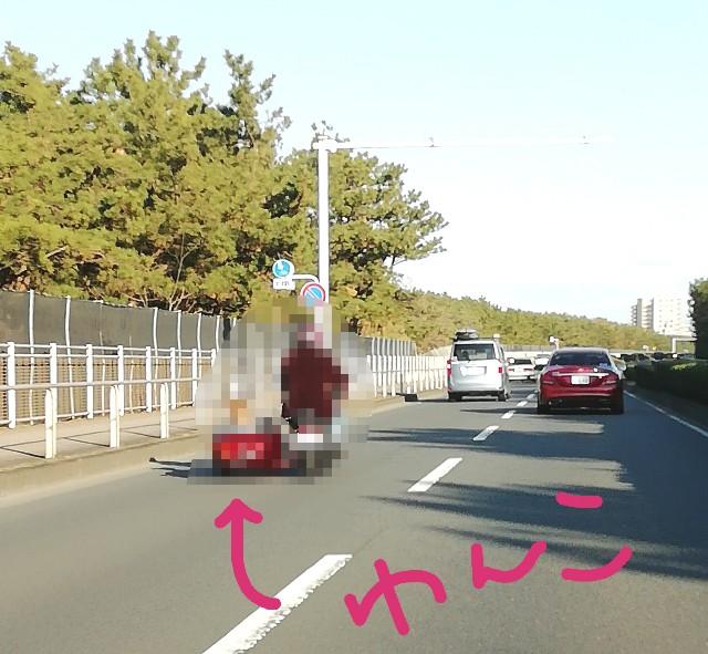 f:id:miwanotabi:20200111165206j:plain