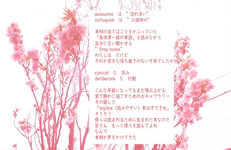 f:id:miya_ma:20200414121018j:plain