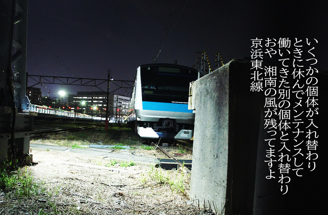f:id:miya_ma:20200802232634j:plain