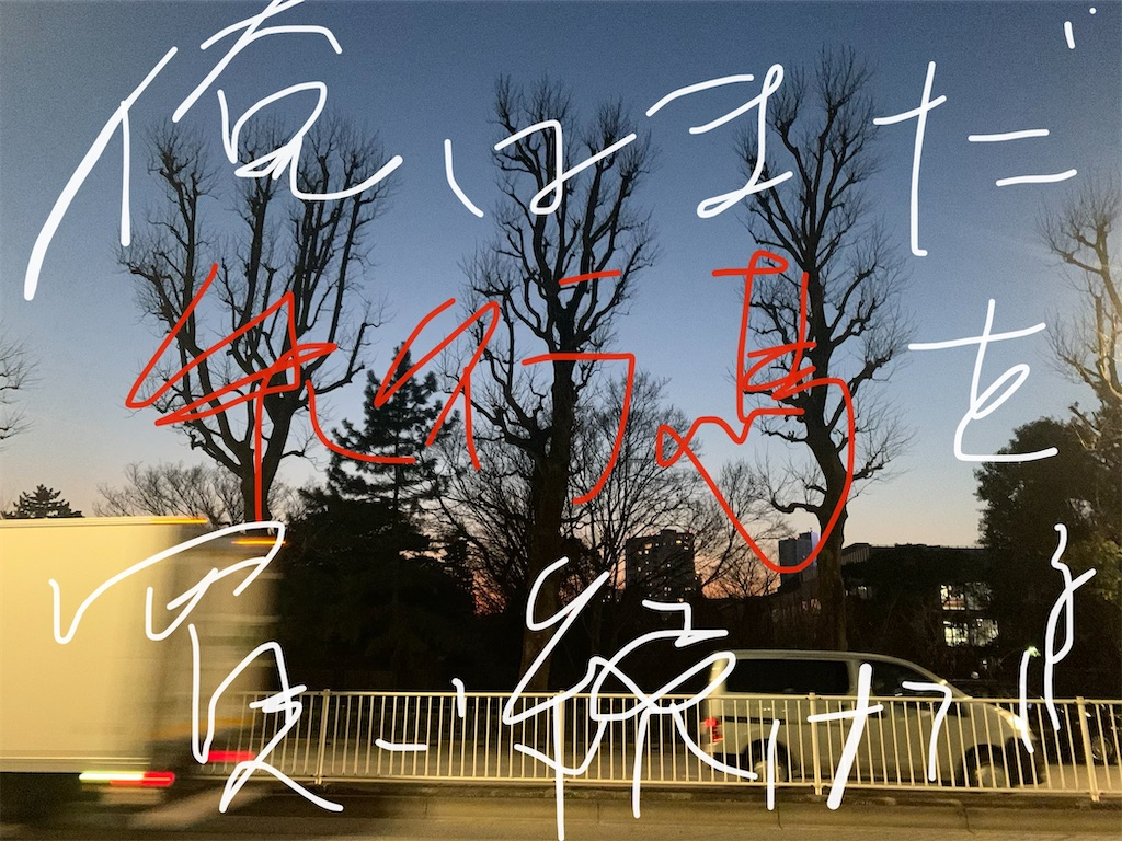 f:id:miyabi11kid:20210215215022j:image