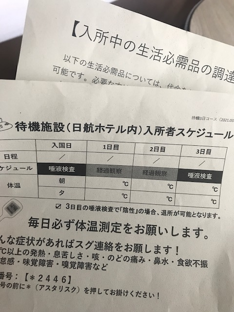 f:id:miyabi2:20210706190331j:plain