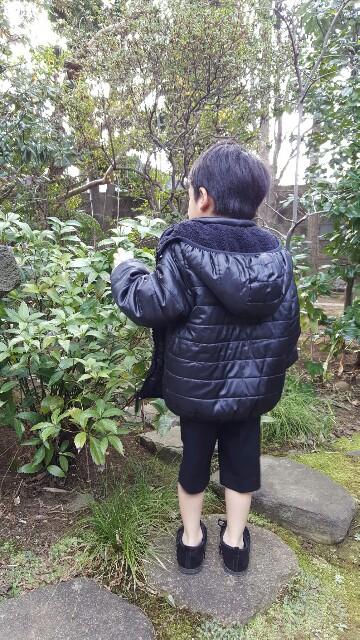 f:id:miyabi_luna:20170202111316j:image