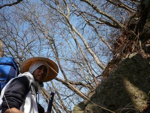 f:id:miyabiyaka:20070326143004j:image