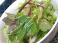 [晩飯]サラダ