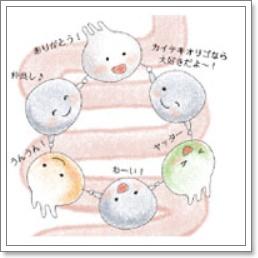 f:id:miyajima0321:20161109163850j:plain