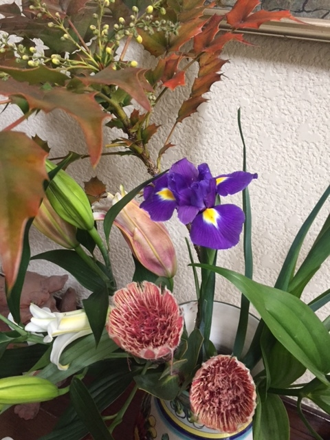 f:id:miyajima0321:20170302102858j:plain