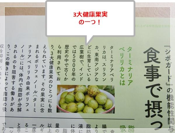 f:id:miyajima0321:20170522175258j:plain