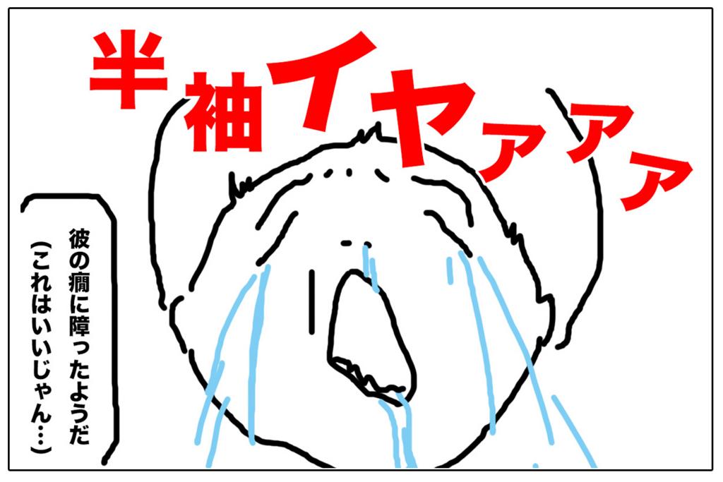 f:id:miyajin1015:20180502001308j:plain