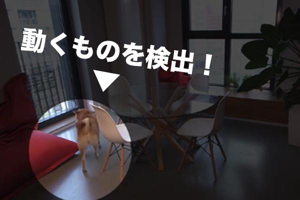 f:id:miyajin1015:20180602225506j:plain