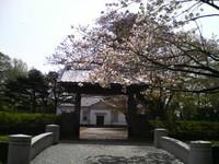 f:id:miyakawa244:20060427123700j:image