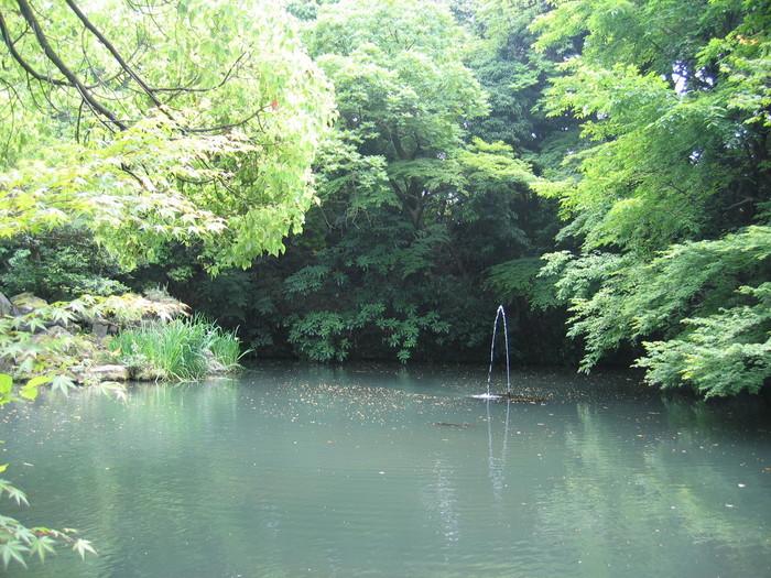 f:id:miyakawa244:20060607124249j:image:w220