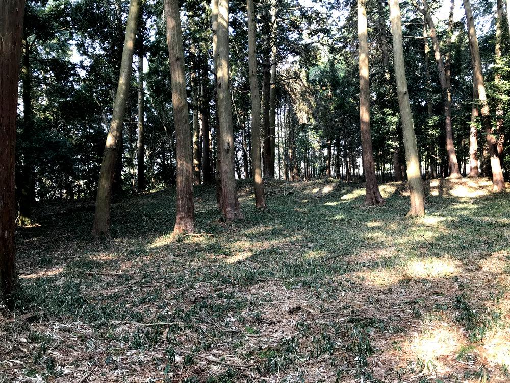 f:id:miyakemasaru:20190523235056j:plain