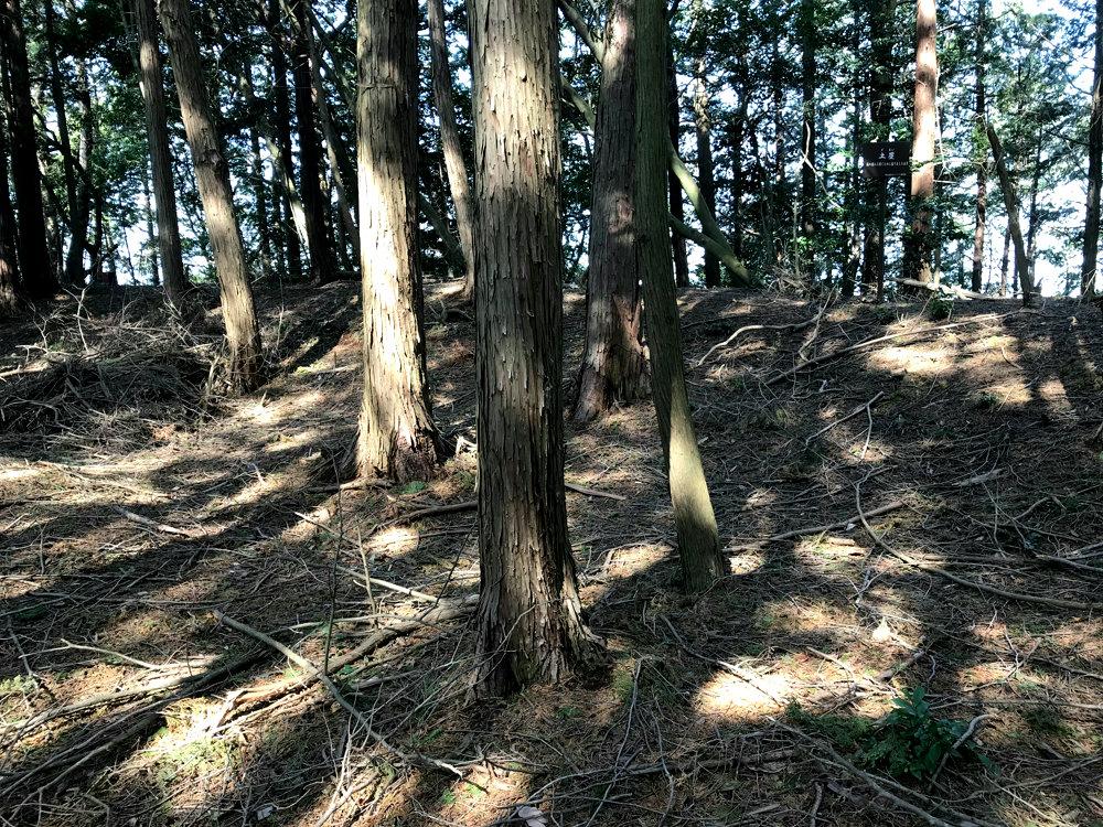 f:id:miyakemasaru:20190527234136j:plain