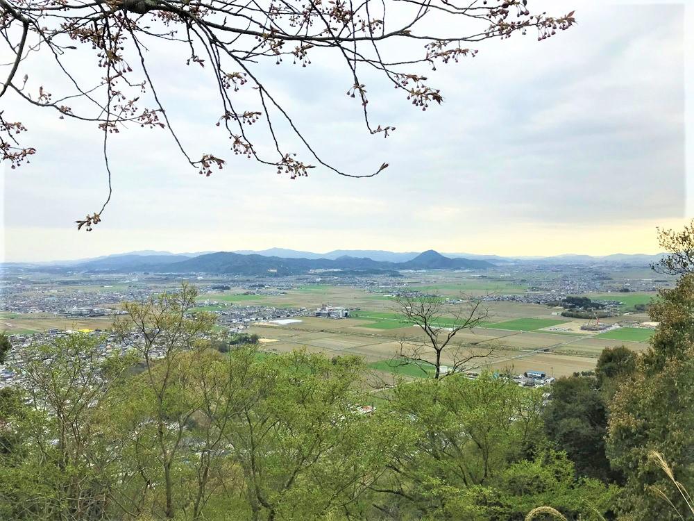 f:id:miyakemasaru:20200509180732j:plain