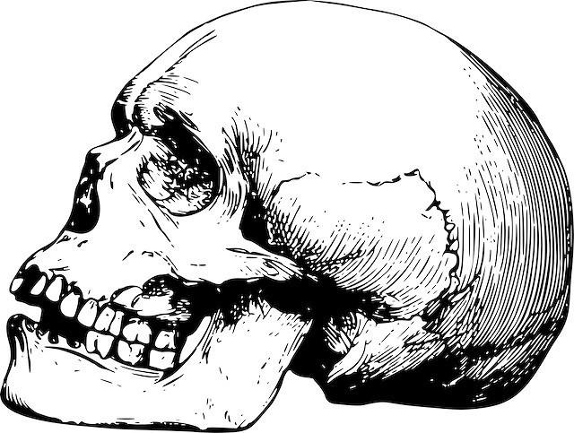 手をつないで埋葬された「モデナの恋人たち」が男同士だったと判明→とたんに恋人じゃないと決めつけられるの画像