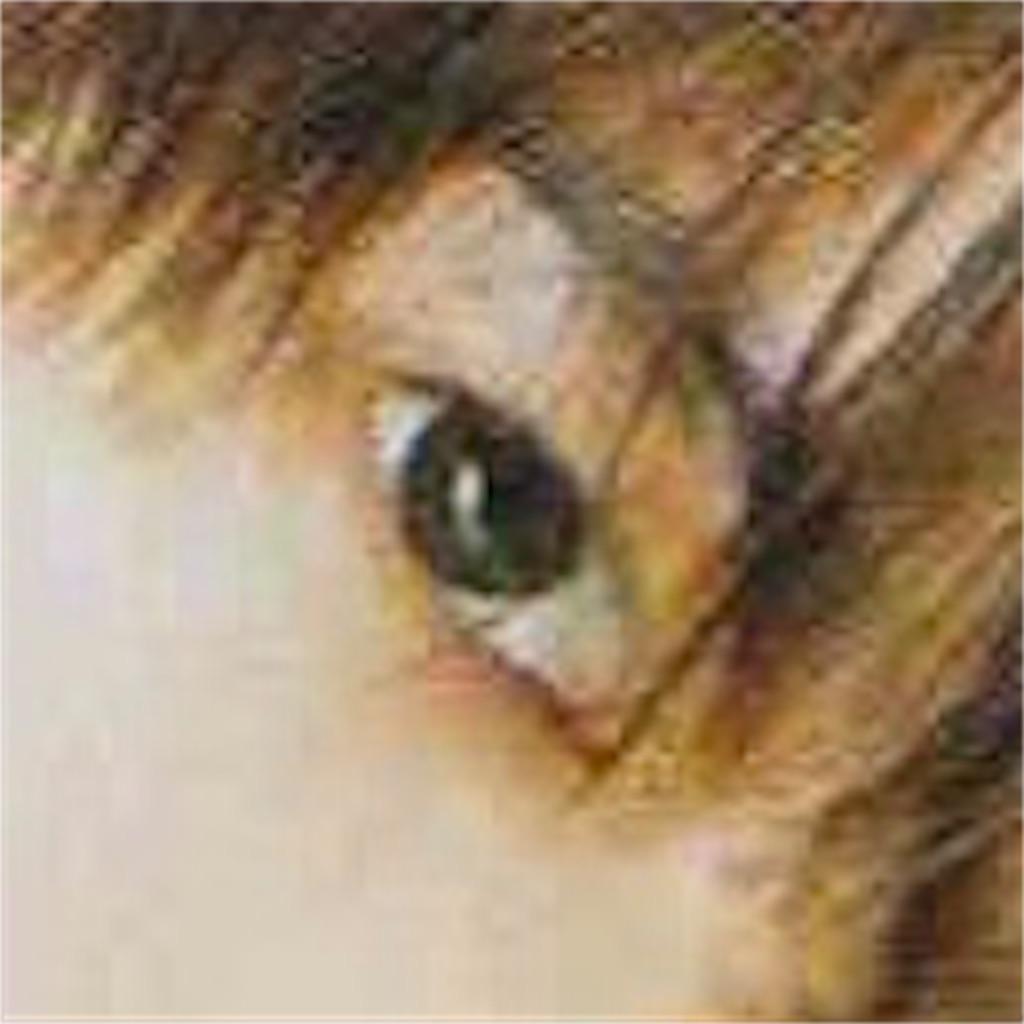 f:id:miyako-0622:20180717140246j:image