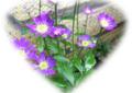 f:id:miyako2226:20120604010947j:image:medium:right