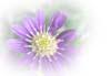 f:id:miyako2226:20121121225405j:image:right
