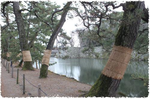 f:id:miyako2226:20121215001121j:image:w450
