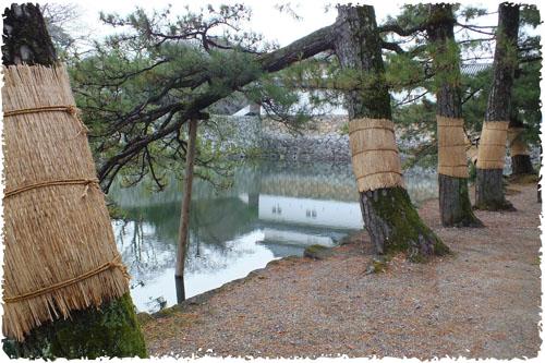 f:id:miyako2226:20121215002242j:image:w450