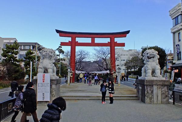 f:id:miyako2226:20130105224018j:image:w500