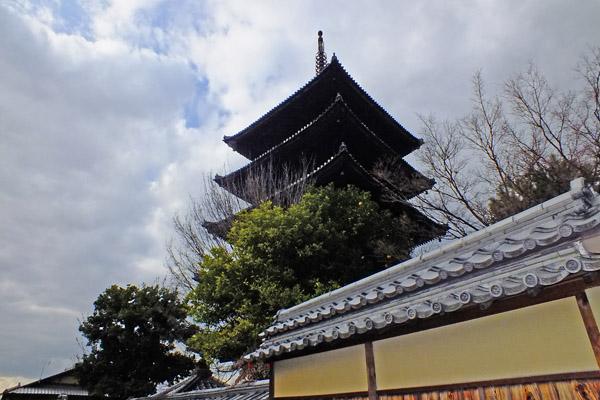 f:id:miyako2226:20130111225008j:image:w500