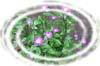 f:id:miyako2226:20130207145902j:image:right