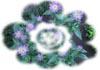 f:id:miyako2226:20130320165527j:image:right