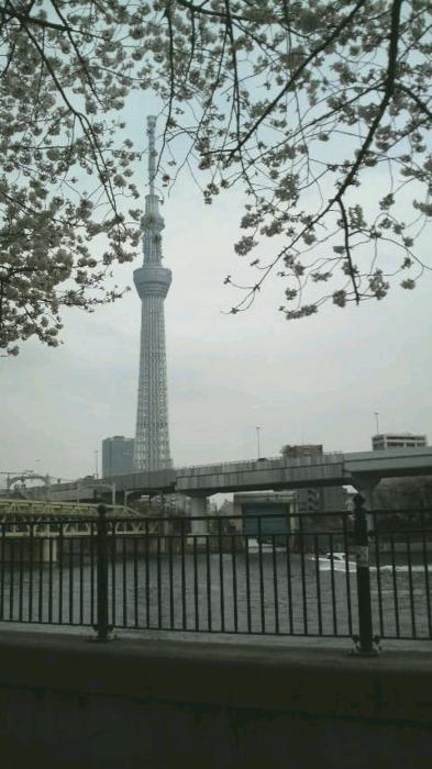 f:id:miyako2226:20130324182706j:image