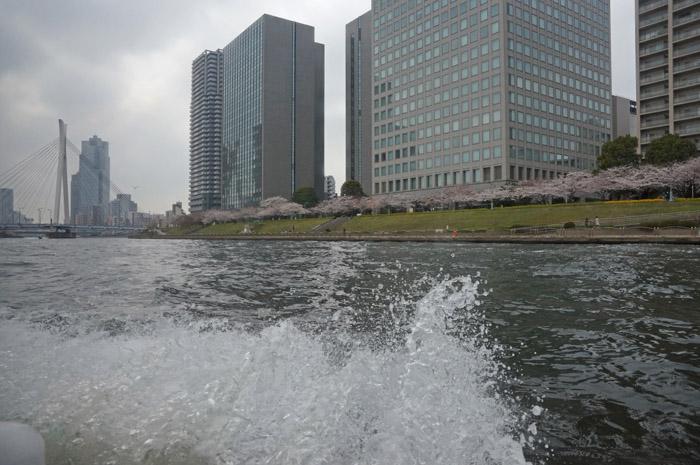 f:id:miyako2226:20130326165323j:image:w550